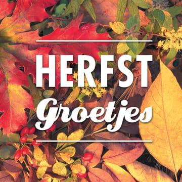 - herfst-kaart-met-leuke-herfst-groetjes