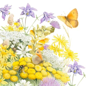 - Kaart-flowers-by-Marjolein-Bastin-Vlinder-gele-bloemen