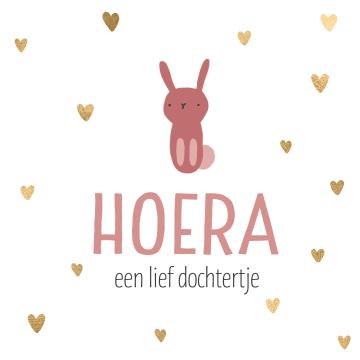 - geboorte-dochter-konijn-hoera-een-lief-dochtertje