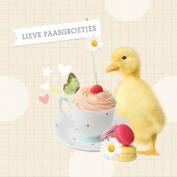 - schattige-paasgroetjes-kaart-met-macarons-en-kuikentje