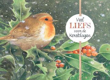 - xmas-marjolein-bastin--vogel-blad-besje-veel-liefs-voor-de-kerstdagen
