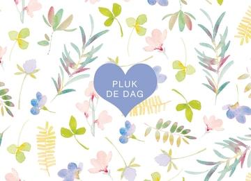 - fleurige-kaart-pluk-de-dag-met-bloemetjes-en-plantjes