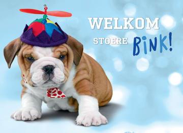 - animal-fiesta-welkom-stoere-bink