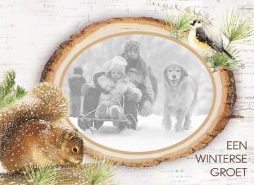 - marjolein-bastin-een-winterse-groet-fotokaart