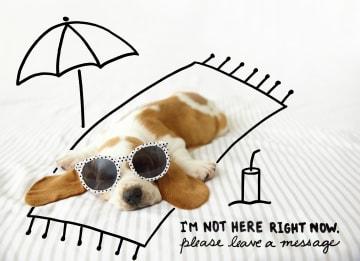 - Zomer-kaart-grappig-Hond-op-handdoek