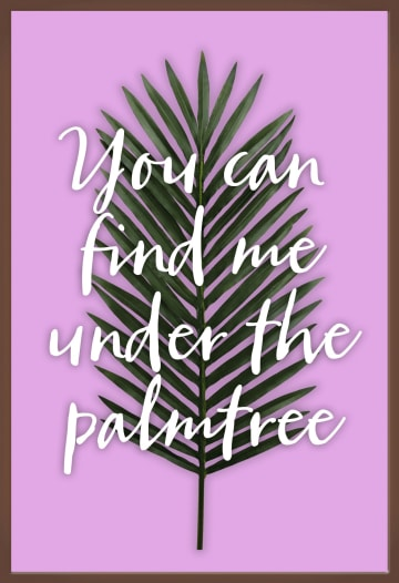 - you-can-find-me-under-the-palmtree-chocolade