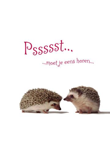 - egels-praten-met-elkaar