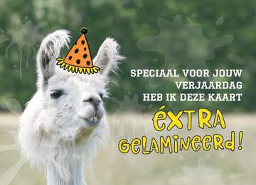 - animal-fiesta-extra-gelamineerd