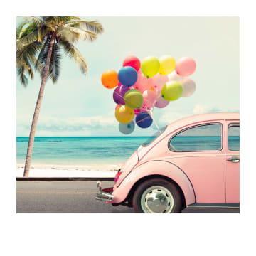 - Zomerkaart-kever-met-tros-ballonnen-Polaroid