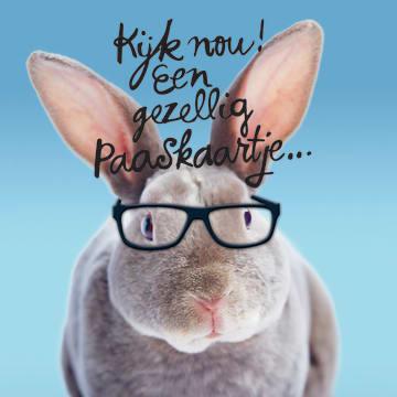 - grappige-paaskaart-konijn-met-bril