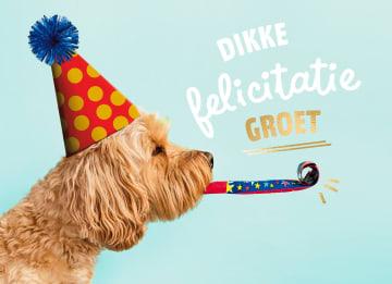 - Felicitatie-kaart-man-vrouw-hond-met-feesthoedje-dikke-felicitatiegroet