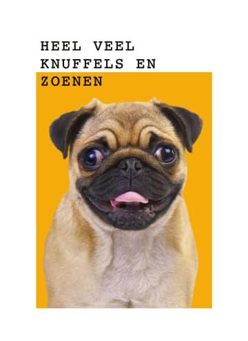 - pugs-heel-veel-knuffels-en-zoenen