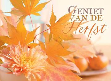 - herfst-kaart-geniet-van-de-herfst-met-herfstbladeren