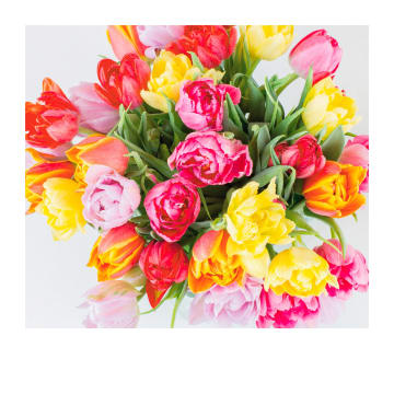 - Complimentkaart-boeket-gekleurde-bloemen