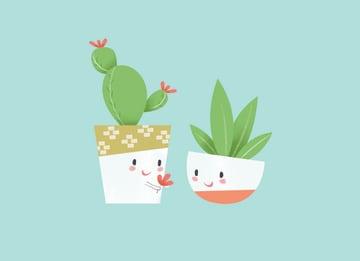 - blanco-2-cactussen
