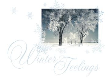 - winter-feelings