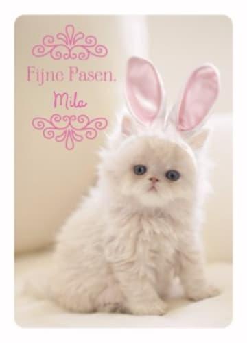 - schattige-paaskaart-kat-met-konijnen-oortjes