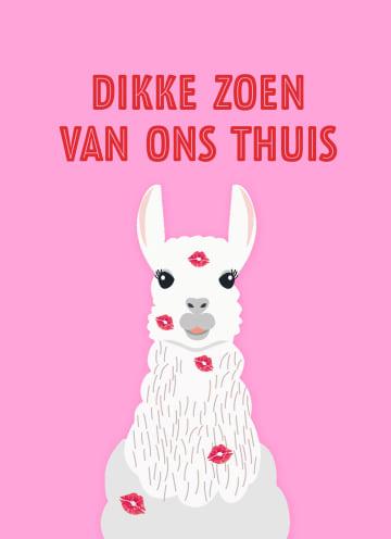 - dikke-zoen-van-ons-thuis-alpaca-sporta