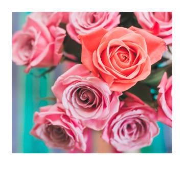 - Trouwdagkaart-rode-en-roze-rozen-Polaroid