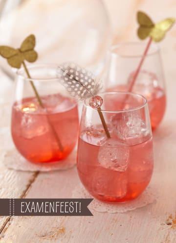 - zomerse-cocktail-examenfeest