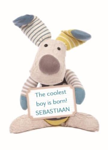 - geboorte-zoon-coolest-born-baby