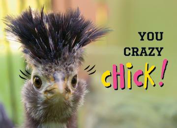 - animal-fiesta-you-crazy-chick