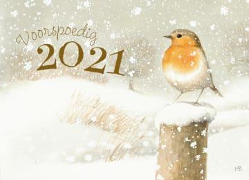 - voorspoedig-2021-roodborst