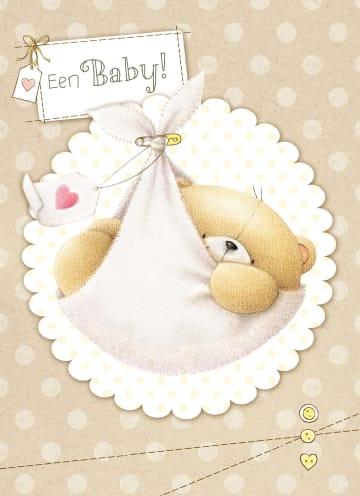 - een-babybeer-in-doek