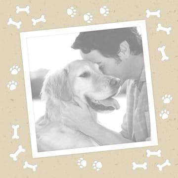 - fotokaart-dierendag-hondenbotjes