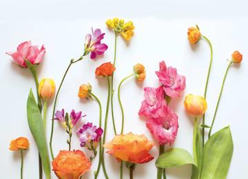 - summervibes-kaart-blanco-met-vrolijke-bloemen-erop