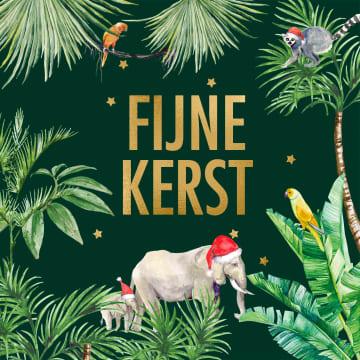 - kerstkaart-hip-olifant-met-kerstmuts-planten