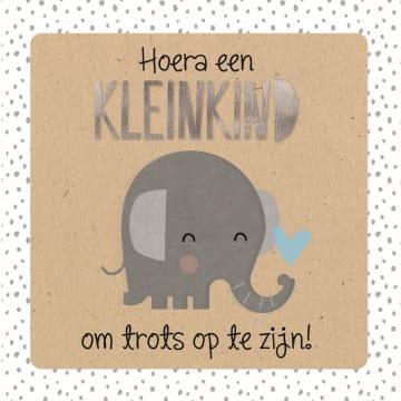- hoera-een-kleinzoon-olifantje