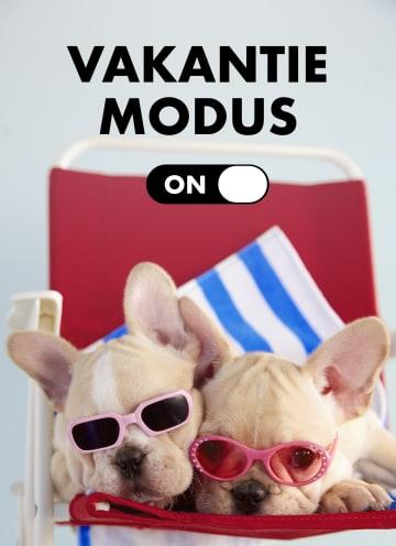 - vakantiemodus-aan-staycation