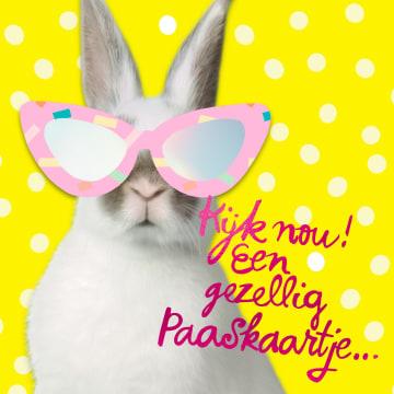 - Paaskaart-konijn-met-zonnebril