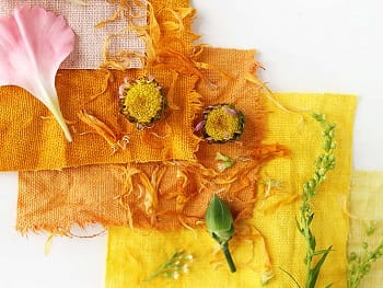 Fabric Designing - Natural Dyeing