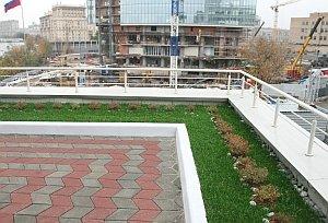 озеленение участка на плоской крыше