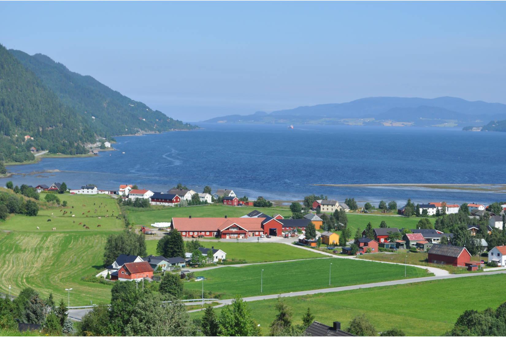 Oversiktsbilde over fjøs og ysteri og Orkdalsfjorden i bakgrunnen.