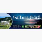 Logo til Saltnes gård