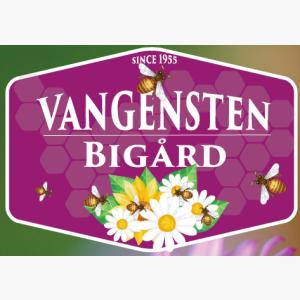 Logo til Vangensten Bigård