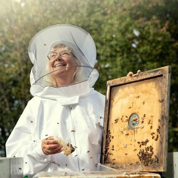 Bilde av Dronninga av honning