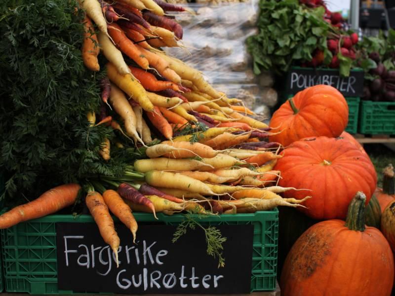 Bilde fra Hjembu Gård