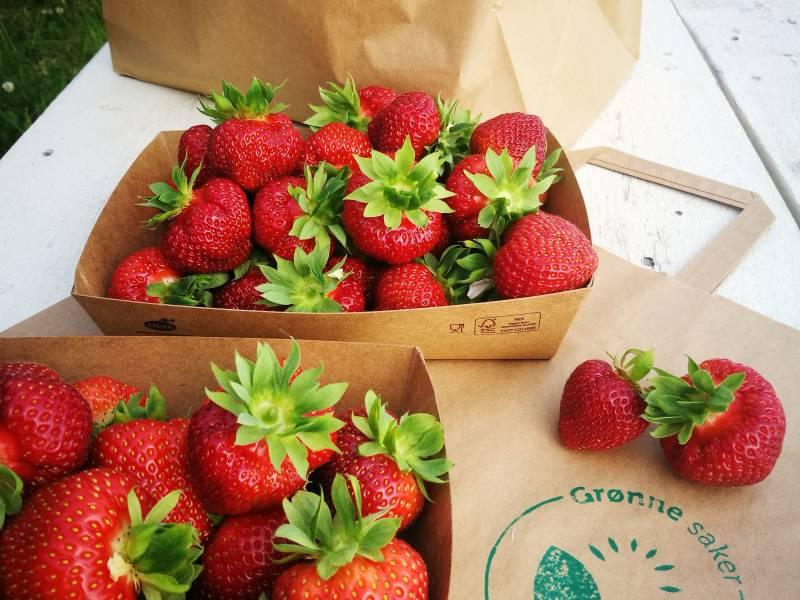Bilde fra Hagells Bær og Grønne Saker