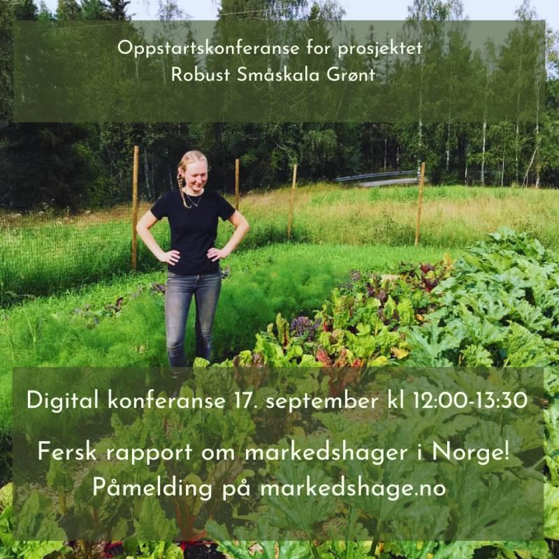 Bilde av Robust Småskala Grønt - oppstartkonferanse 17.september