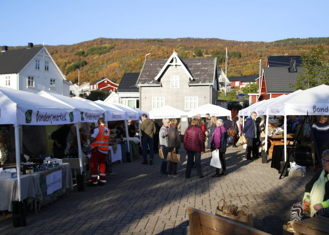 Bilde av Midtre Hålogaland