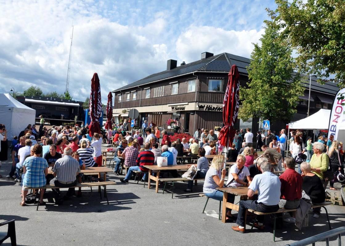 Bilde av Innlandet (Hedmark og Oppland)