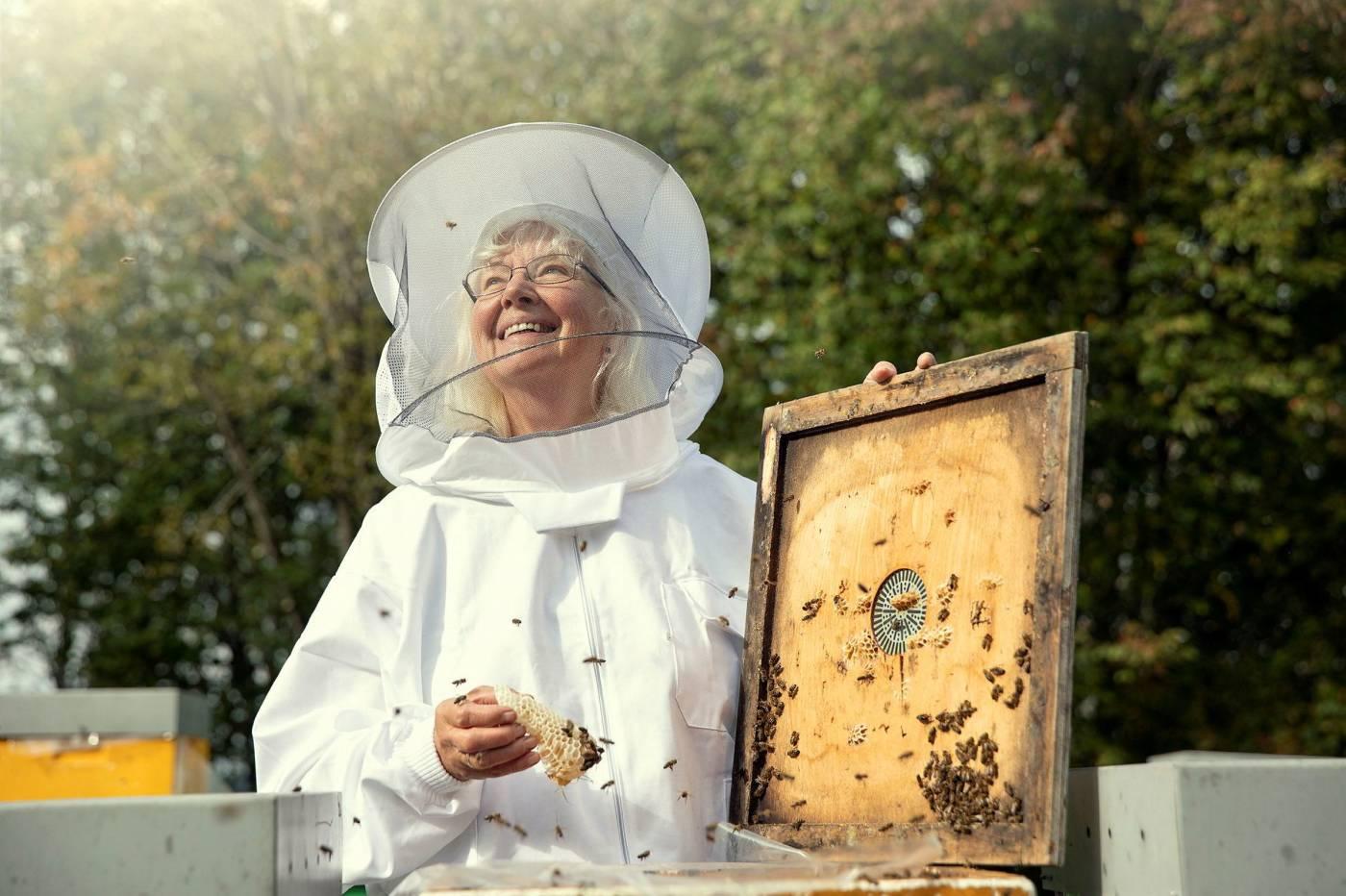 Dronninga av honning