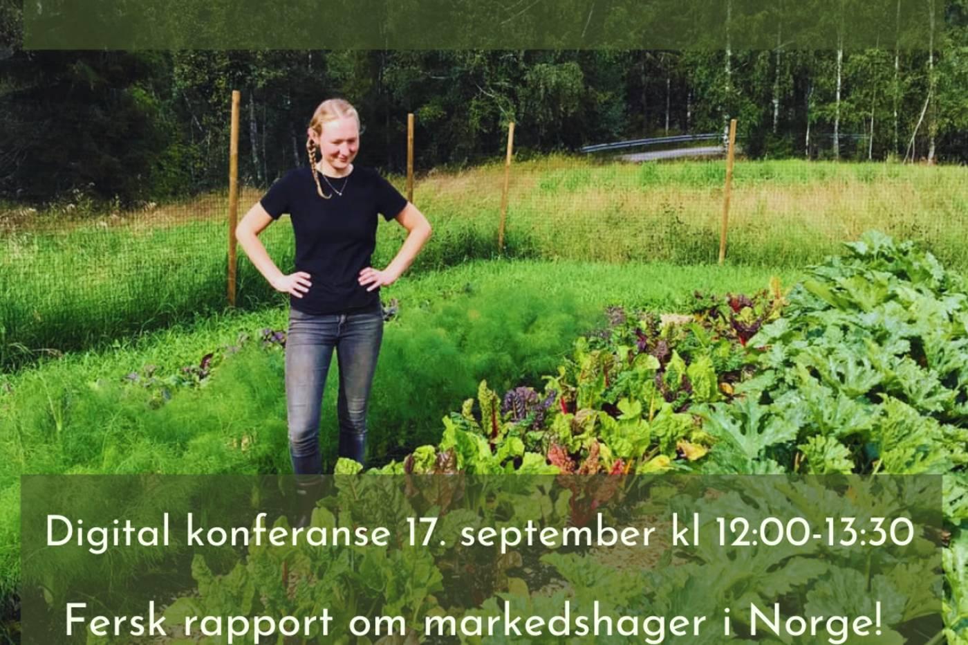 Robust Småskala Grønt - oppstartkonferanse 17.september