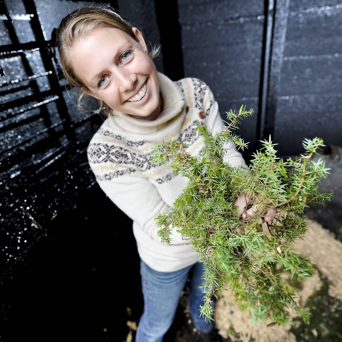 Bilde av Skaper gull av grønne enger