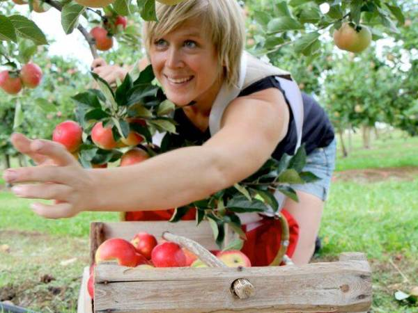 Fruktbygda