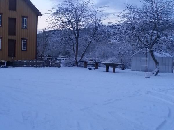 Moe-gård